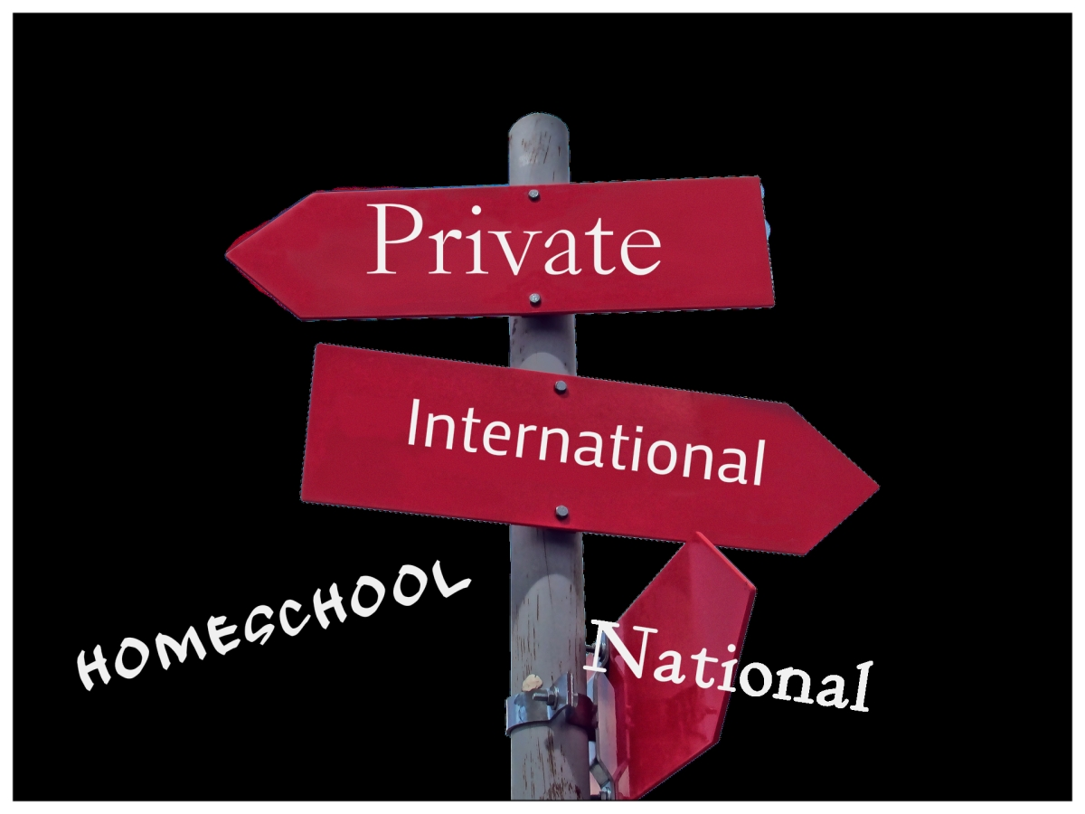 Mushrooming of private schooling options in Malaysia, what are the pitfalls?